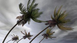 bernoulli_uragano